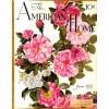 Cover Print of American Home, June 1937