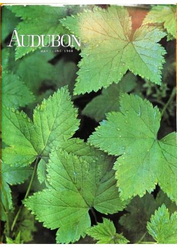 Audubon, May 1968