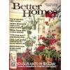 Better Homes and Gardens, November 1977