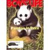 Cover Print of Boys Life, November 1995
