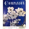Cover Print of Companion, May 1952
