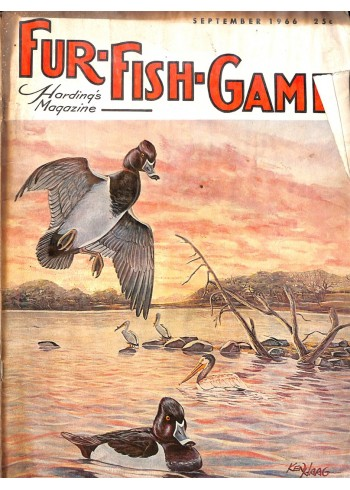 Cover Print of Fur-Fish-Game, September 1966