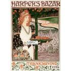 Harpers Bazar, November, 1894. Poster Print.