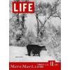 Life, February 8 1937