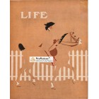 Life, 1911. Poster Print. C.Coles Phillips.