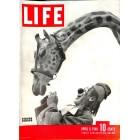 Life, April 8 1946