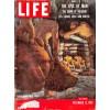 Life, December 12 1955