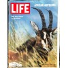 Cover Print of Life, December 5 1969