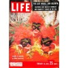 Cover Print of Life, February 16 1959