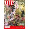 Life, January 25 1960