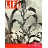 Life, July 5 1937
