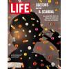 Cover Print of Life, June 24 1966