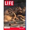 Cover Print of Life, June 27 1960
