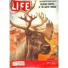 Cover Print of Life, June 7 1954