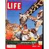Cover Print of Life Magazine, August 1 1960
