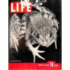 Cover Print of Life, August 30 1937