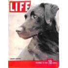 Cover Print of Life Magazine, December 12 1938