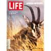 Life Magazine, December 5 1969
