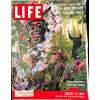 Life Magazine, January 25 1960