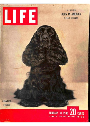 Cover Print of Life, January 31 1949
