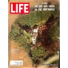 Cover Print of Life, January 8 1965
