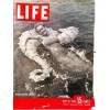 Cover Print of Life Magazine, July 15 1946