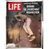 Cover Print of Life Magazine, July 28 1967