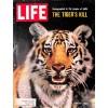 Life, June 25 1965