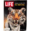 Cover Print of Life Magazine, June 25 1965