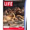 Cover Print of Life Magazine, June 27 1960