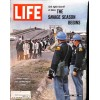 Cover Print of Life Magazine, March 19 1965