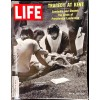 Cover Print of Life Magazine, May 15 1970