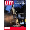 Cover Print of Life Magazine, May 23 1960