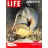 Cover Print of Life Magazine, November 30 1953