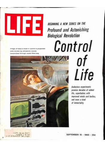 Cover Print of Life Magazine, September 10 1965