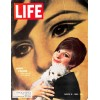 Cover Print of Life, March 18 1966