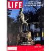 Life, May 23 1960