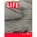 Cover Print of Life, May 24 1937