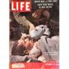 Cover Print of Life, November 19 1956