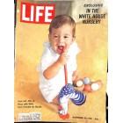 Cover Print of Life, November 24 1961