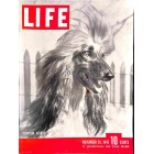 Cover Print of Life, November 26 1945