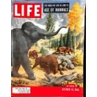 Life, October 19 1953