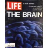 Cover Print of Life, October 1 1971