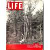 Life, October 29 1945