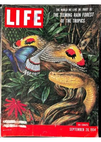 Cover Print of Life, September 20 1954