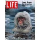 Life, January 30 1970