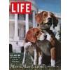 Life June 19 1964