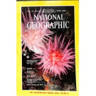 Cover Print of National Geographic Magazine, April 1980