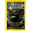 Cover Print of National Geographic Magazine, February 2000