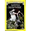 Cover Print of National Geographic Magazine, May 1977